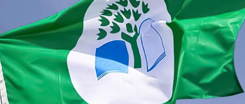 Projeto Eco-Escolas da ESTGV